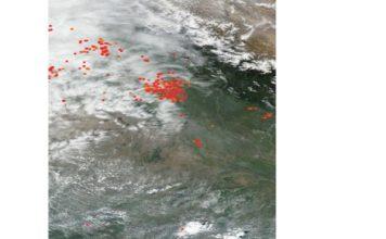 पराली बढ़ा रहा है दिल्ली वालों की परेशानी, बढ़ रहा है प्रदूषण स्तर